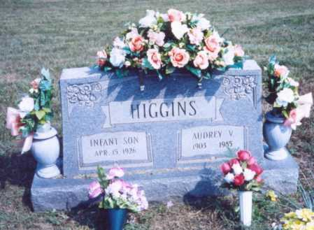 HIGGINS, AUDREY V. - Lawrence County, Ohio | AUDREY V. HIGGINS - Ohio Gravestone Photos