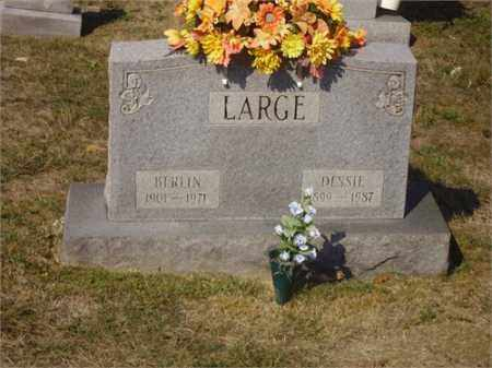 LARGE, BERLIN - Lawrence County, Ohio | BERLIN LARGE - Ohio Gravestone Photos