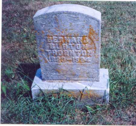 THORNTON, BERNARD BURTON - Lawrence County, Ohio | BERNARD BURTON THORNTON - Ohio Gravestone Photos