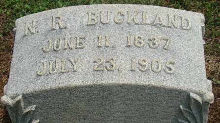 BUCKLAND, NELSON R. - Licking County, Ohio | NELSON R. BUCKLAND - Ohio Gravestone Photos