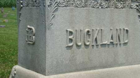 BUCKLAND, NELSON - Licking County, Ohio | NELSON BUCKLAND - Ohio Gravestone Photos