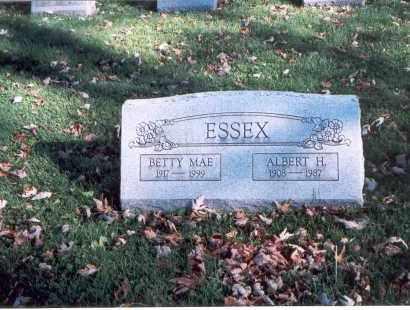 ESSEX, ALBERT H. - Licking County, Ohio | ALBERT H. ESSEX - Ohio Gravestone Photos