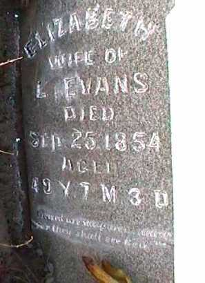 EVANS, ELIZABETH - Licking County, Ohio | ELIZABETH EVANS - Ohio Gravestone Photos