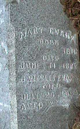 EVANS, J. WESLEY - Licking County, Ohio | J. WESLEY EVANS - Ohio Gravestone Photos
