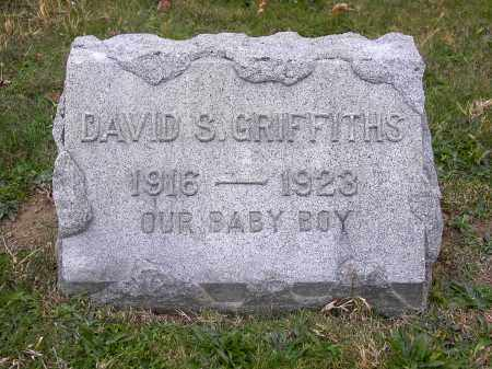 GRIFFITHS, DAVID S. - Licking County, Ohio | DAVID S. GRIFFITHS - Ohio Gravestone Photos