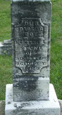 STONE, LESTER L. - Licking County, Ohio | LESTER L. STONE - Ohio Gravestone Photos
