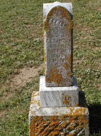 BRUGLER, LENA - Logan County, Ohio | LENA BRUGLER - Ohio Gravestone Photos