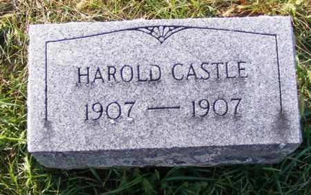 CASTLE, HAROLD - Logan County, Ohio | HAROLD CASTLE - Ohio Gravestone Photos