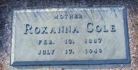 COLE, ROXANNA - Logan County, Ohio | ROXANNA COLE - Ohio Gravestone Photos