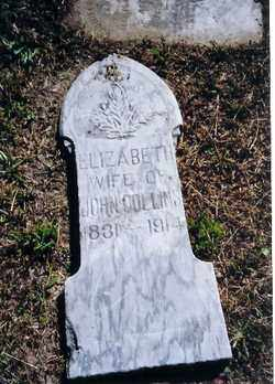 COLLINS, ELIZABETH - Logan County, Ohio | ELIZABETH COLLINS - Ohio Gravestone Photos