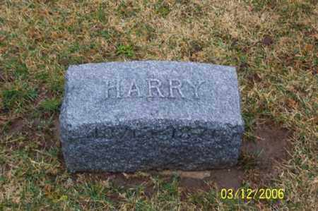 FRANTZ, HARRY - Logan County, Ohio | HARRY FRANTZ - Ohio Gravestone Photos