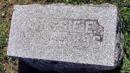 HENGSTELER, CRISSIE E - Logan County, Ohio   CRISSIE E HENGSTELER - Ohio Gravestone Photos
