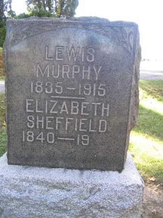 SHEFFIELD, ELIZABETH - Logan County, Ohio | ELIZABETH SHEFFIELD - Ohio Gravestone Photos