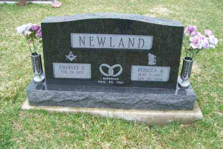 NEWLAND, REBECCA A. - Logan County, Ohio | REBECCA A. NEWLAND - Ohio Gravestone Photos