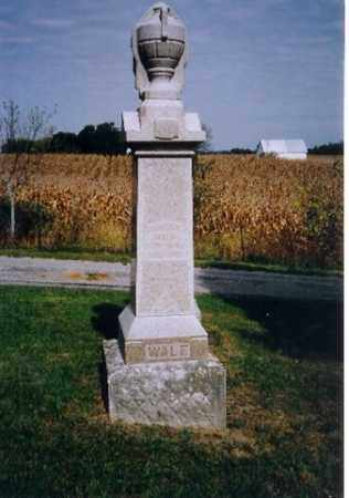 WALE, TIMOTHY - Logan County, Ohio | TIMOTHY WALE - Ohio Gravestone Photos