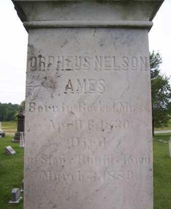 AMES, ORPHEUS NELSON - Lorain County, Ohio | ORPHEUS NELSON AMES - Ohio Gravestone Photos