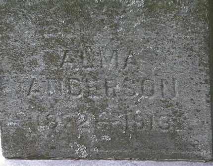 ANDERSON, ALMA - Lorain County, Ohio | ALMA ANDERSON - Ohio Gravestone Photos