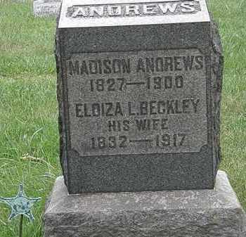 ANDREWS, MADISON - Lorain County, Ohio | MADISON ANDREWS - Ohio Gravestone Photos