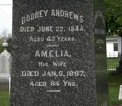 ANDREWS, AMELIA - Lorain County, Ohio | AMELIA ANDREWS - Ohio Gravestone Photos