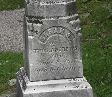ANDREWS, SARAH S. - Lorain County, Ohio | SARAH S. ANDREWS - Ohio Gravestone Photos