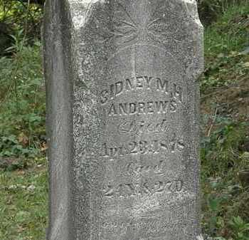 ANDREWS, SIDNEY M. H. - Lorain County, Ohio | SIDNEY M. H. ANDREWS - Ohio Gravestone Photos