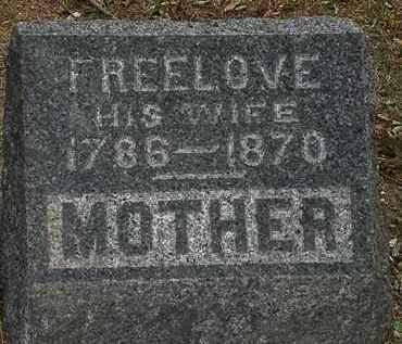 ANDRUS, FREELOVE - Lorain County, Ohio | FREELOVE ANDRUS - Ohio Gravestone Photos