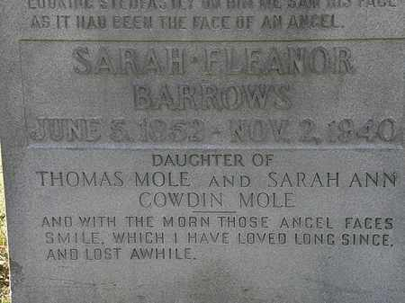 BARROWS, SARAH ELEANOR - Lorain County, Ohio | SARAH ELEANOR BARROWS - Ohio Gravestone Photos