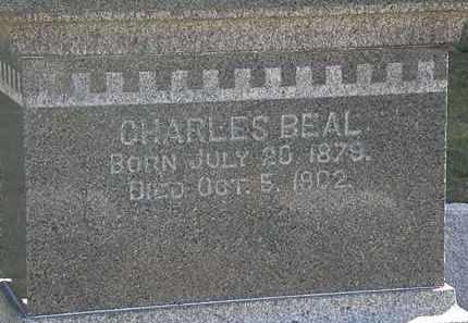 BEAL, CHARLES - Lorain County, Ohio | CHARLES BEAL - Ohio Gravestone Photos