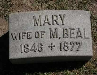BEAL, MARY - Lorain County, Ohio | MARY BEAL - Ohio Gravestone Photos