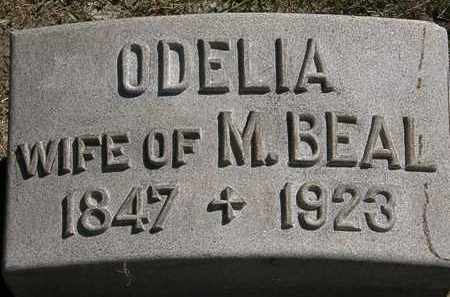 BEAL, ODELIA - Lorain County, Ohio | ODELIA BEAL - Ohio Gravestone Photos