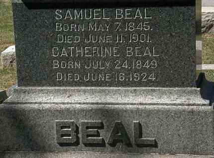 BEAL, SAMUEL - Lorain County, Ohio | SAMUEL BEAL - Ohio Gravestone Photos