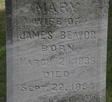 BEAVOR, MARY - Lorain County, Ohio | MARY BEAVOR - Ohio Gravestone Photos