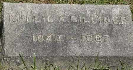 BILLINGS, MILLIE A. - Lorain County, Ohio | MILLIE A. BILLINGS - Ohio Gravestone Photos