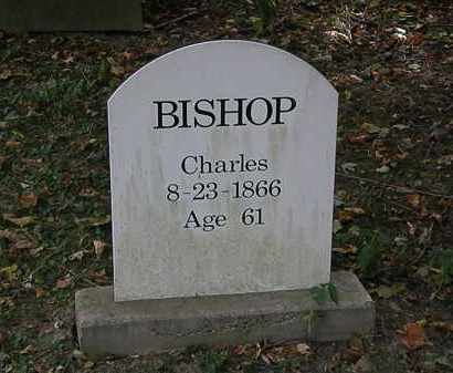 BISHOP, CHARLES - Lorain County, Ohio | CHARLES BISHOP - Ohio Gravestone Photos
