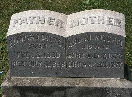 BITTEL, EDWARD - Lorain County, Ohio | EDWARD BITTEL - Ohio Gravestone Photos