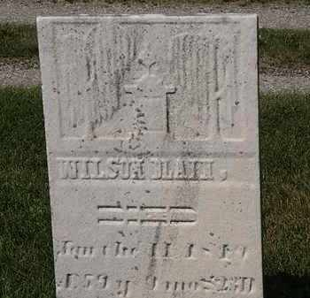 BLAIN, WILSON - Lorain County, Ohio | WILSON BLAIN - Ohio Gravestone Photos
