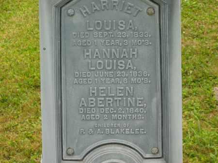 BLAKELEE, HANNAH LOUISA - Lorain County, Ohio | HANNAH LOUISA BLAKELEE - Ohio Gravestone Photos