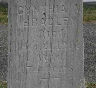 BRADLEY, CYNTHIA A. - Lorain County, Ohio | CYNTHIA A. BRADLEY - Ohio Gravestone Photos