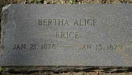 BRICE, BERTHA ALICE - Lorain County, Ohio | BERTHA ALICE BRICE - Ohio Gravestone Photos