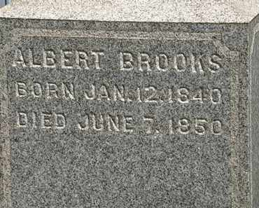 BROOKS, ALBERT - Lorain County, Ohio | ALBERT BROOKS - Ohio Gravestone Photos