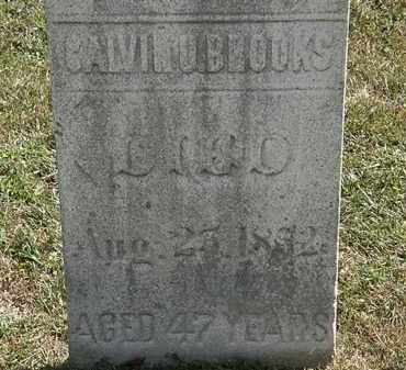 BROOKS, CALVIN U. - Lorain County, Ohio | CALVIN U. BROOKS - Ohio Gravestone Photos
