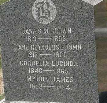 REYNOLDS BROWN, JANE - Lorain County, Ohio | JANE REYNOLDS BROWN - Ohio Gravestone Photos