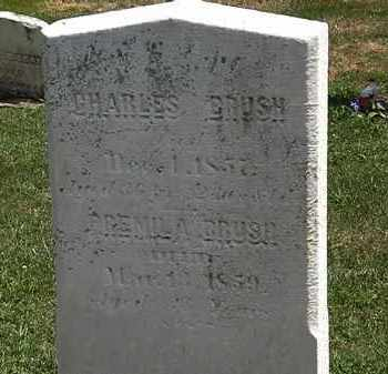 BRUSH, CHARLES - Lorain County, Ohio | CHARLES BRUSH - Ohio Gravestone Photos