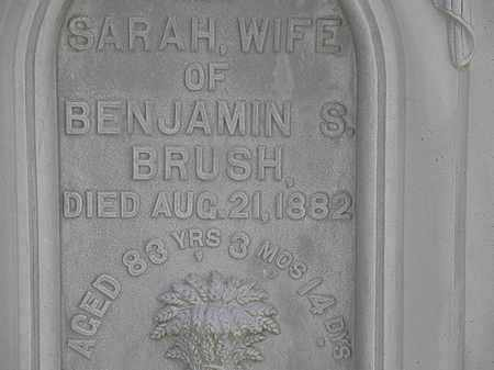 BRUSH, SARAH - Lorain County, Ohio | SARAH BRUSH - Ohio Gravestone Photos