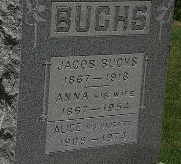 BUCHS, ALICE - Lorain County, Ohio | ALICE BUCHS - Ohio Gravestone Photos