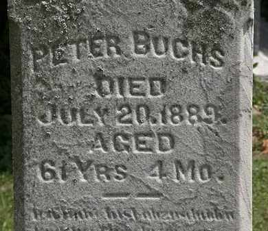 BUCHS, PETER - Lorain County, Ohio | PETER BUCHS - Ohio Gravestone Photos