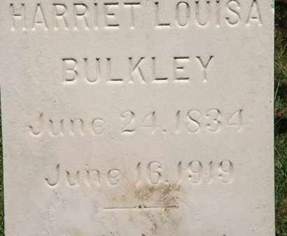 BULKLEY, HARRIET LOUISA - Lorain County, Ohio | HARRIET LOUISA BULKLEY - Ohio Gravestone Photos