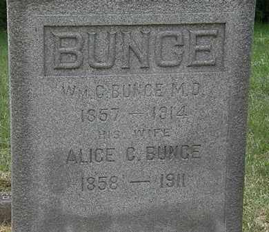BUNCE, ALICE C. - Lorain County, Ohio | ALICE C. BUNCE - Ohio Gravestone Photos