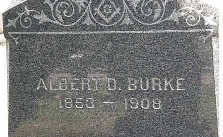 BURKE, ALBERT D. - Lorain County, Ohio | ALBERT D. BURKE - Ohio Gravestone Photos