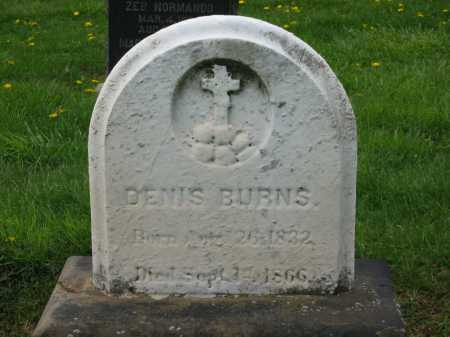 BURNS, DENNIS - Lorain County, Ohio | DENNIS BURNS - Ohio Gravestone Photos